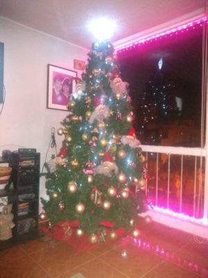 コロンビアクリスマスツリー夜