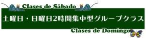 スペイン語 土曜日、日曜日2時間集中型グループクラス