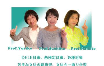 日本人講師による集中型プライベートレッスンのメイン画像